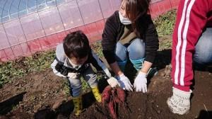2020_2.10.25 サツマイモ掘り🍠_201110